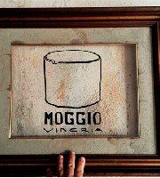 Moggio Vineria