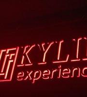 Kylin Experience