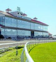 Best gambling places in louisiana win slots at casino