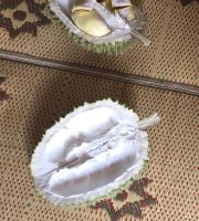 Rumah Durian Bu Sunarni