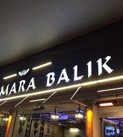 Galata Marmara Balik