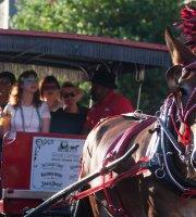 Tours en carruajes tirados por caballos