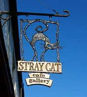 stray Cat Cafe Gallery
