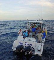 ทัวร์และเรือเช่าสำหรับตกปลา