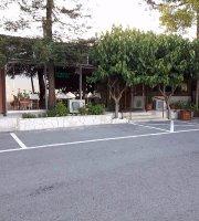 Sequoia Taverna