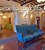 Ristorante Hotel Villa Cheli La Camelia