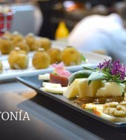 Restaurante Sintonia