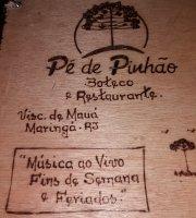 Pe de Pinhao
