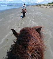 ทัวร์ขี่ม้า
