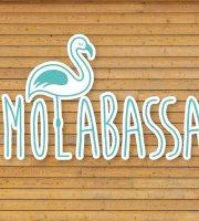 Molabassa
