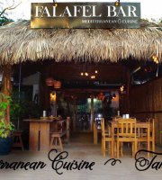 Falafel Bar Medetirenean cusine