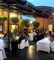 Olivos Fusión Restaurant- Bar- Café