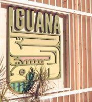 Iguana Snack's