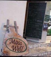 Moss Well