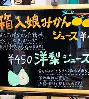 Yamayasu, Toyohashi Station