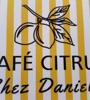 Cafe Citrus Chez Daniela