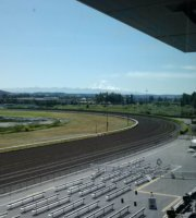 Emerald Downs - Rainier Terrace