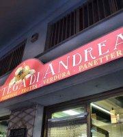 La Bottega di Andrea