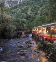Restoran Vrelo Borak
