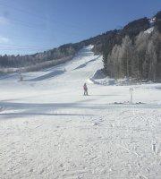 Alpinstua