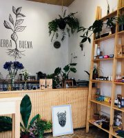 Hierba Buena