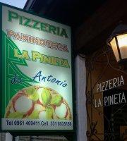 Pizzeria La Pineta
