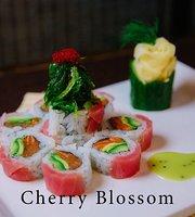 Yokozuna Sushi & Grill