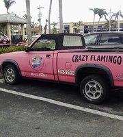 The Crazy flamingo