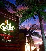 iL Gallo Restaurante