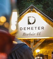Demeter Borbar 44