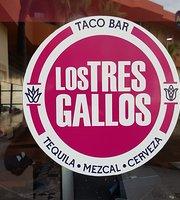 Los Tres Gallos Taco Bar