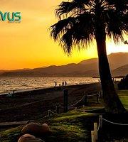 Novus Beach Club