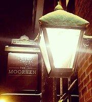 Moorhen