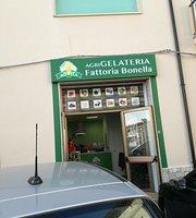 AgriGelateria Fattoria Bonella