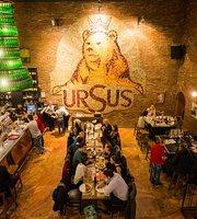 Fabrica de bere URSUS