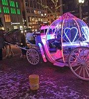 Tour in carrozza con cavalli