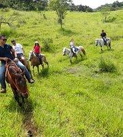 Équitation et promenades