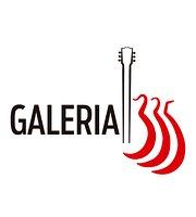 Galeria 335