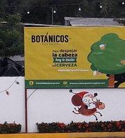 Botanicos Beer Garden