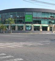 Guacamaya