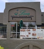 Luna Authentic Vietnamese Cuisine