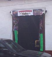 Taquiera Tono