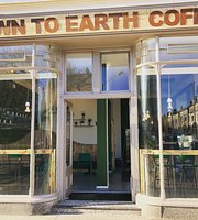 Down to Earth Coffee