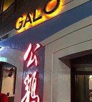 Galo Macau