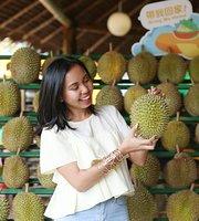 DurianBB Park
