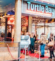 Turtle Bay Plymouth