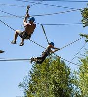Công viên phiêu lưu đu dây & công viên phiêu lưu trên không