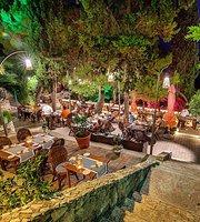 Restaurant Amo