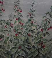 Mel's Raspberry Patch