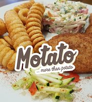 Motato